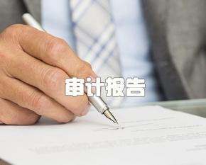 重庆审计报告